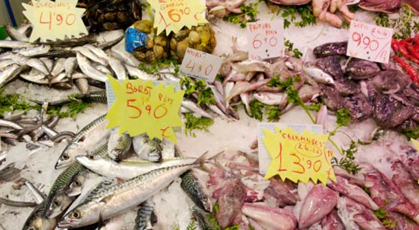 Fish Mislabeling – What Are You Paying For