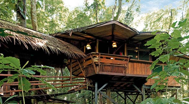 Amazing Tree House Hotels Around the World