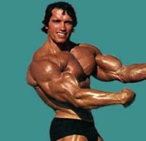 Arnold Schwarzenegger Diet Plan for Bodybuilding
