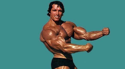 Arnold Schwarzenegger Diet Plan for Bodybuilding