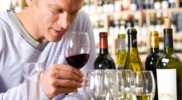 Guys Guide to Wine Tasting