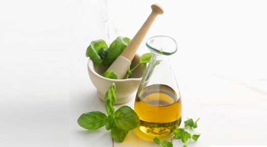 Powerful Health Benefits of Oregano Oil