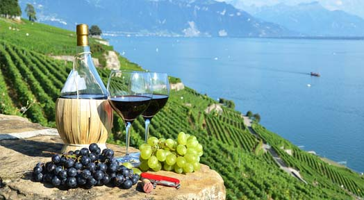 Health Benefits of Red Wine That Will Surprise You