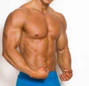Top Muscle Gaining Foods