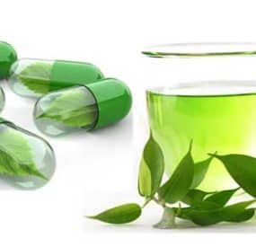 Here is Why You Should Care About Green Tea Extract