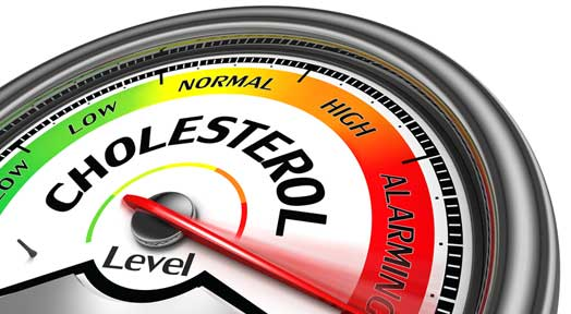 Removing and Reducing Cholesterol Levels