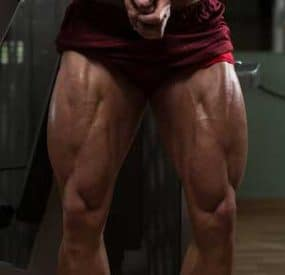 The Importance of Training Your Legs