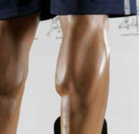 Get Killer Calves