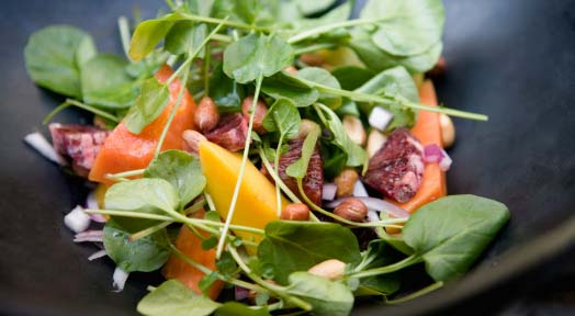 The Basics of the Raw Food Diet