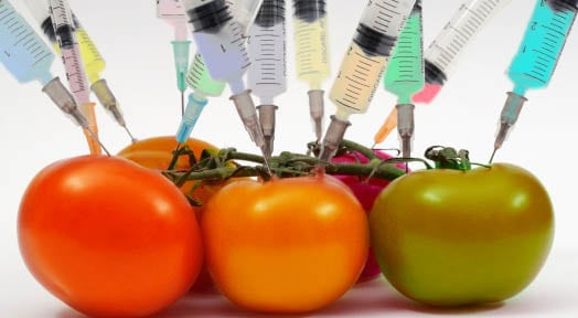 What are GMO's and Why They're Bad for You