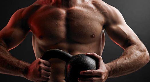 Basic Principles of Building Muscle