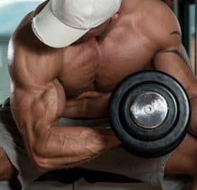 The Muscle Fiber Destruction Workout