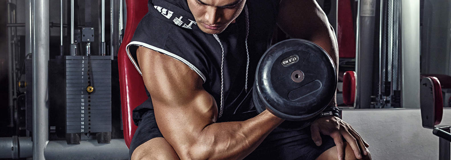 Best Bicep Workouts for Strong and Impressive Arms
