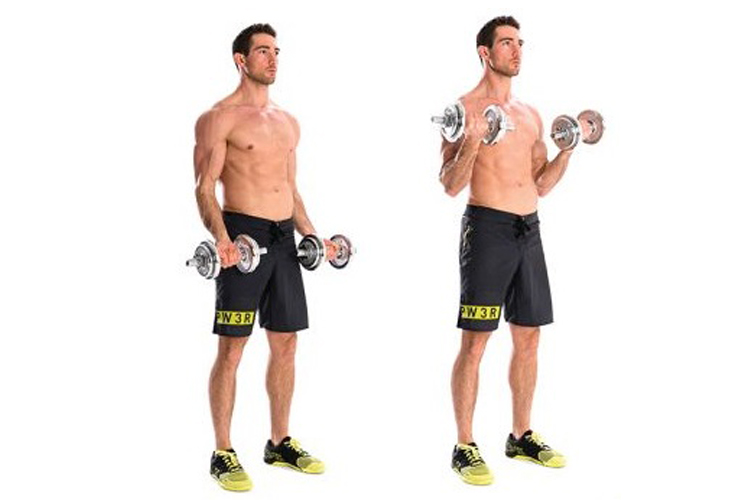 Bicep Workouts The Best Strong Arms Exercise