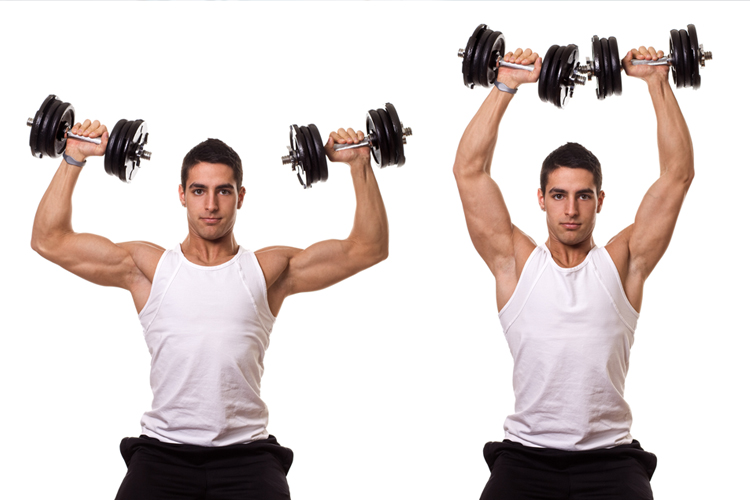 Essential Exercises for Building Muscle Strength - Shoulder Press