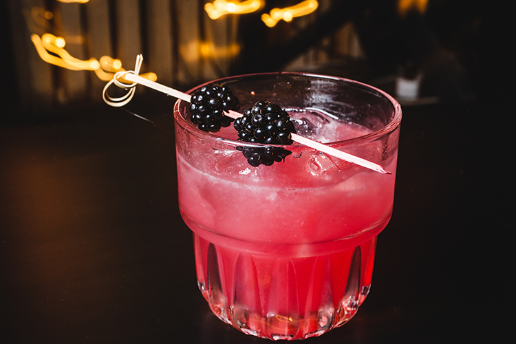 Cranberry Bourbon Cocktail