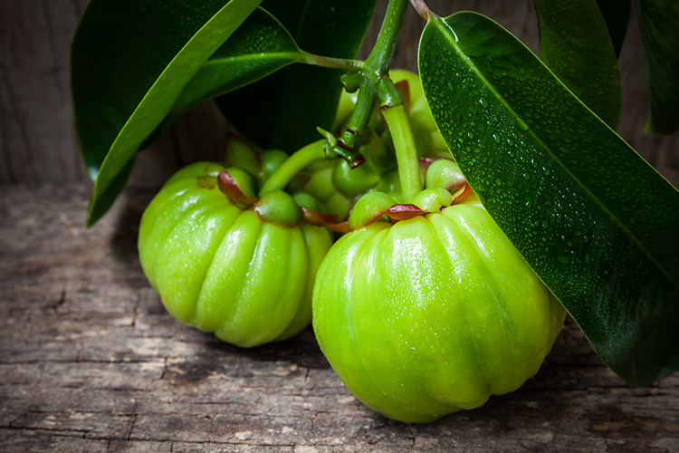 Weight loss supplements for men to drop those pounds - Garcinia Cambogia Extract