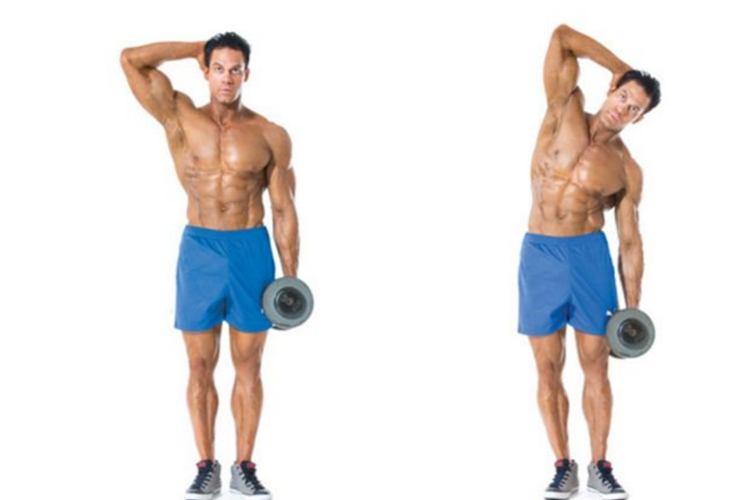 Photo Credits: https://thextremefitness.com/exercise-database/abs/dumbbell-side-bends/