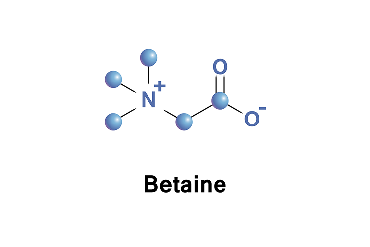 betaine chemical diagram
