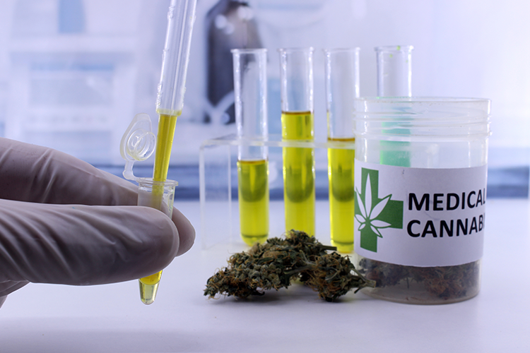 scientific researches on weed