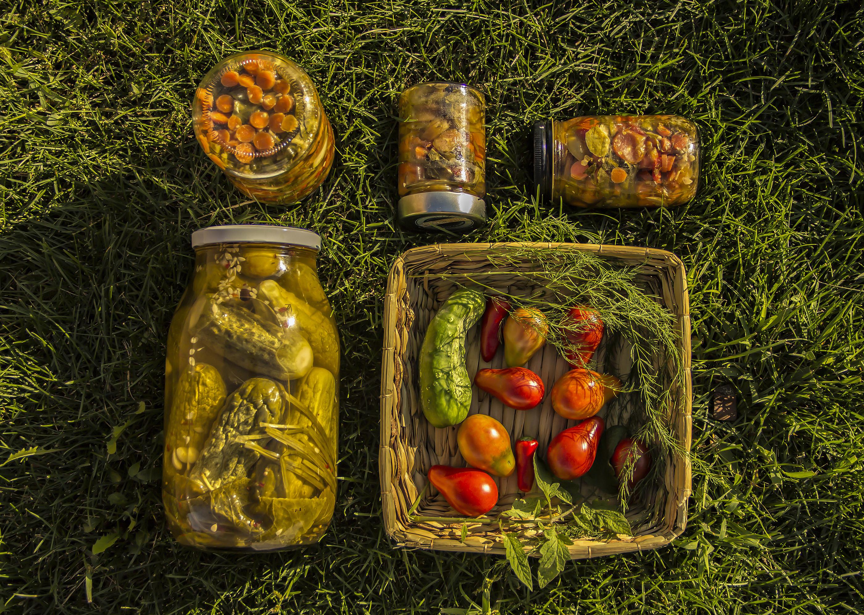 probiotic pickles