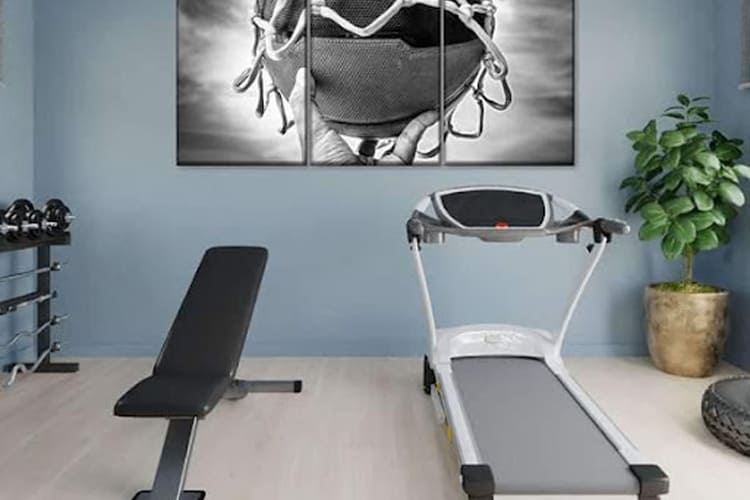 Decorate your home gym Elephant Stock
